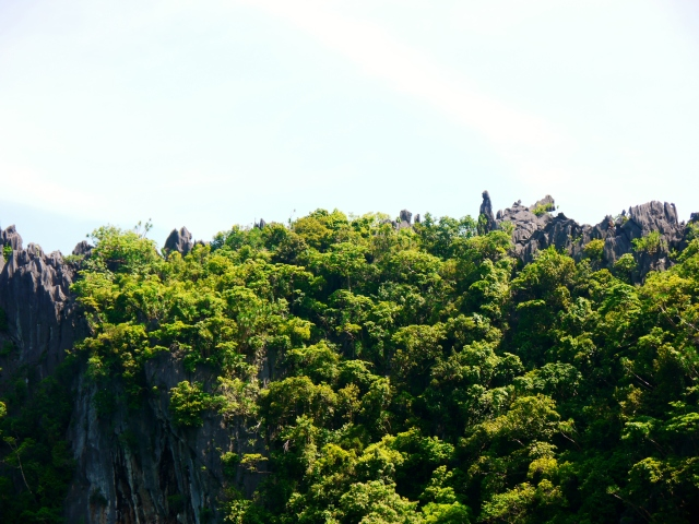 can you see the rock formation of mama mary on top?